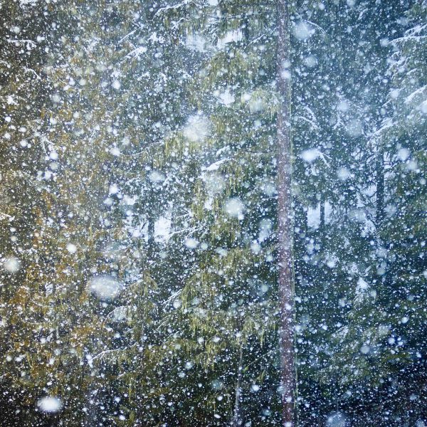 Whistler Snow Storm limited-edition print by Jay Goodrich