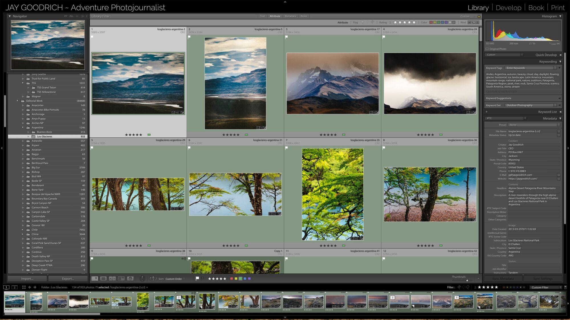 Capture One Pro or Lightroom screenshot