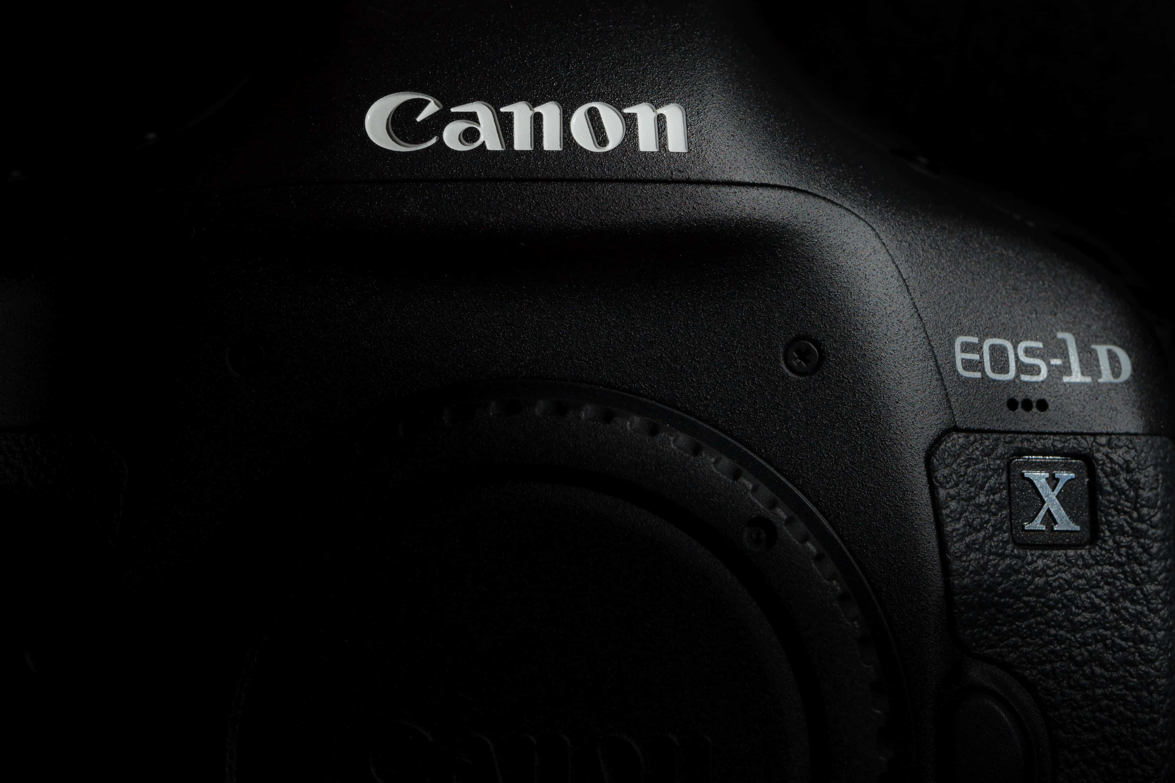 Sony vs Canon DNG Downloads
