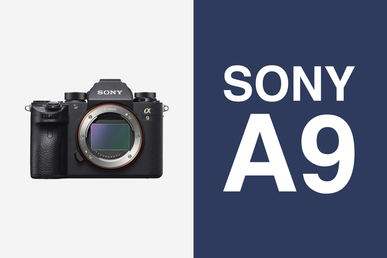 Canon 1DX Mark II v. Sony a9