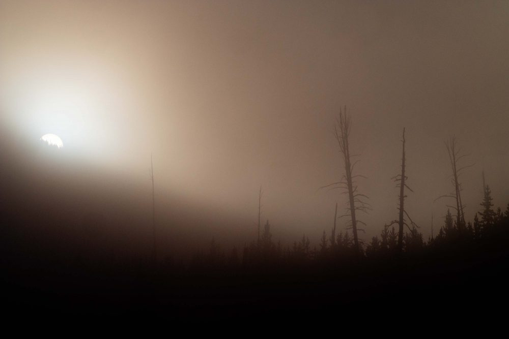 West Yellowstone Photo Adventure - fog sunrise yellowstone - Jay Goodrich