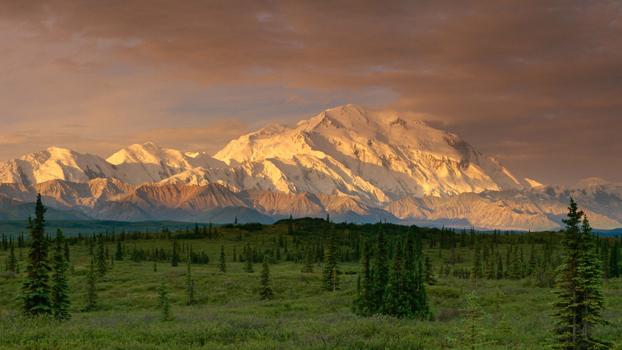Sunrise Denali and Alaska Range by Jay Goodrich