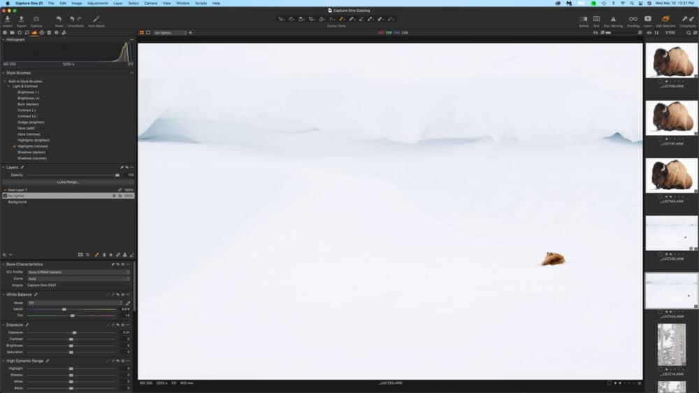 Capture One 21 (14.1.0) by Jay Goodrich
