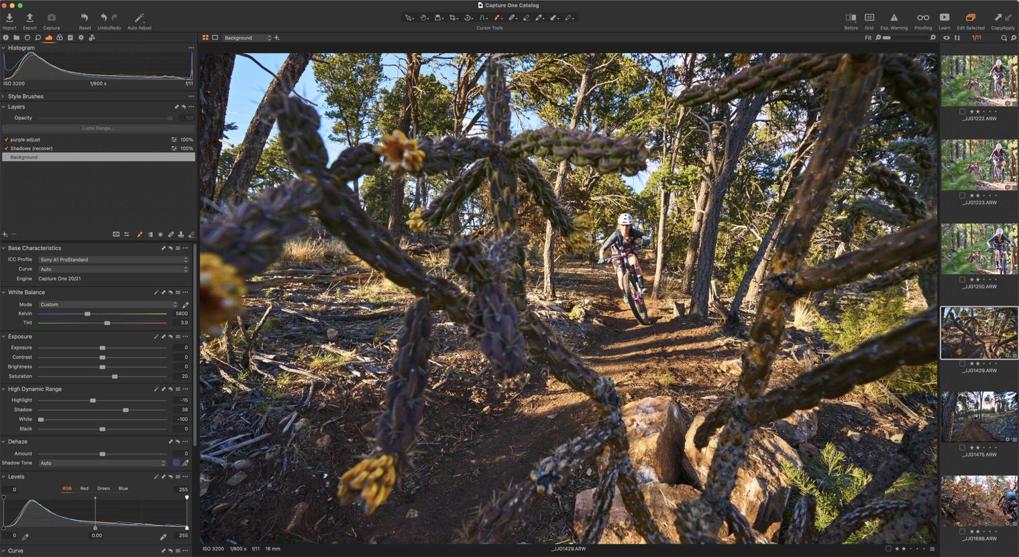 8 Reasons Capture One is the Best Image Editor screenshot by Jay Goodrich