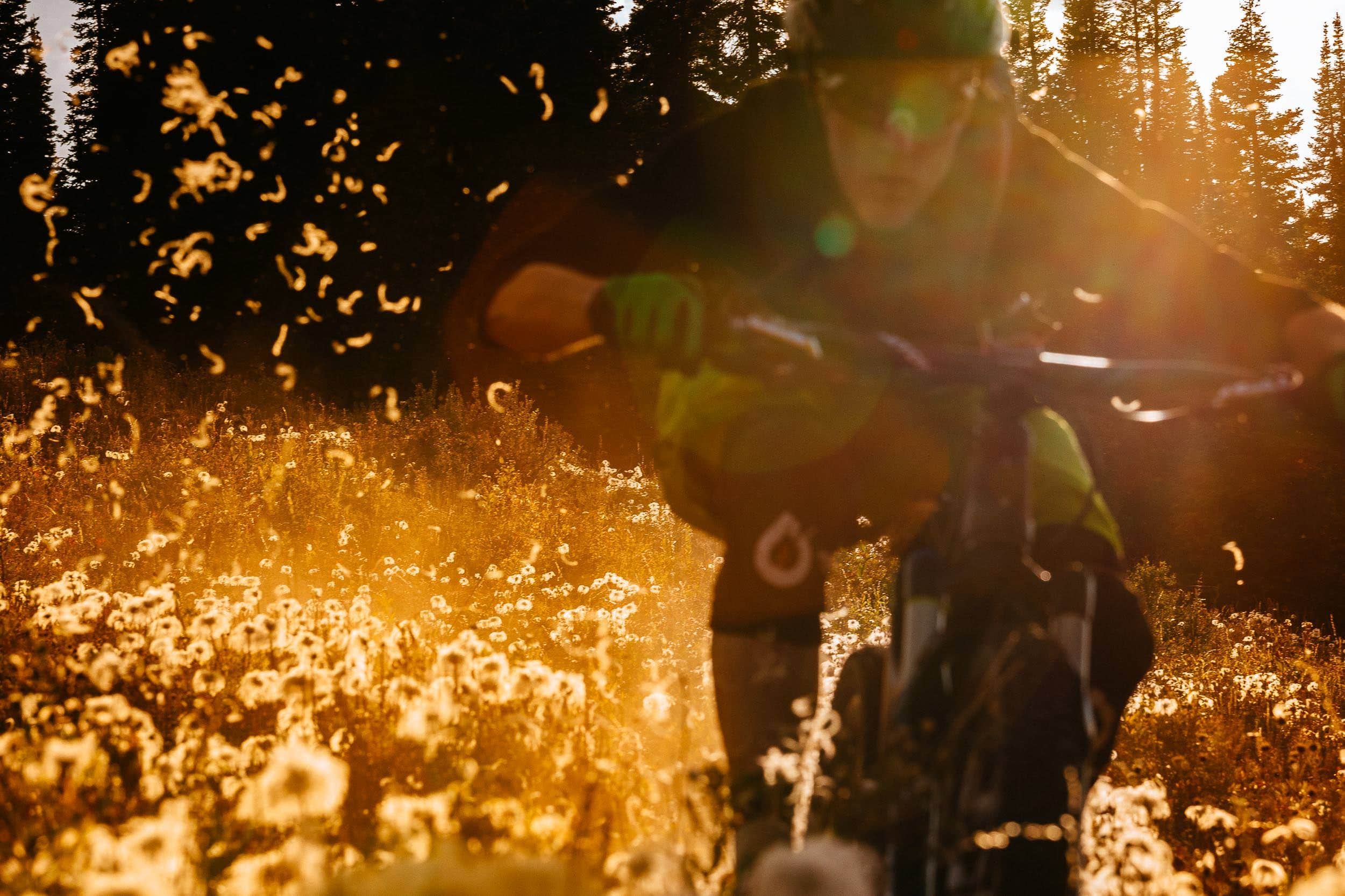 Andrew Whiteford rides the lift accessed singletrack trails of Grand Targhee Resort at sunset